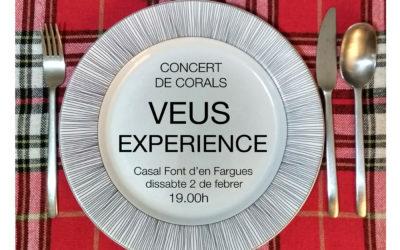 "Concert ""VeusExperience"" al casal de la Font d'en Fargues"