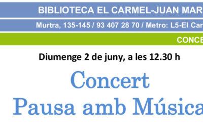 Concert d'estiu de Pausa