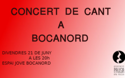 Concert de cant a Bocanord